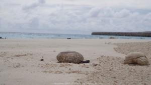 20 หาดทรายสีขาว