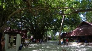 33 Public Area